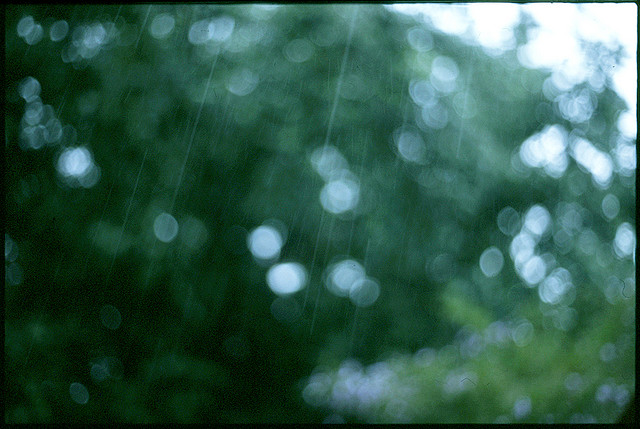 How to Take Good Photos in Bad Weathers with Film Cameras (4)