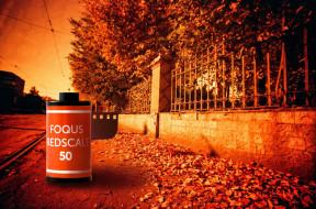 Краткий обзор фотопленки FOQUS Redscale 50