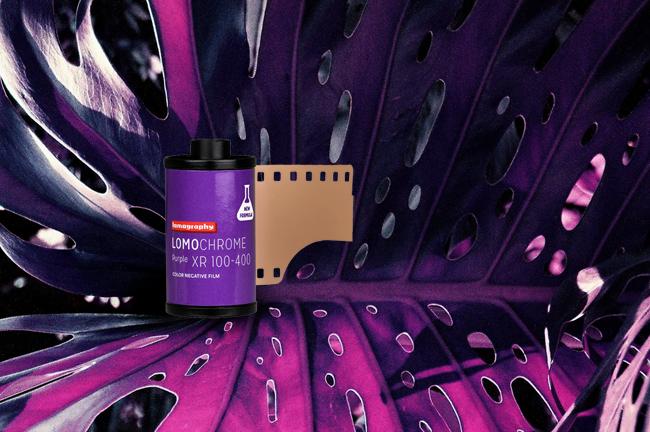 Фотопленку Lomochrome Purple снова можно купить в СПб!