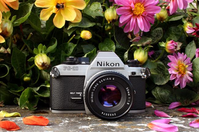 пленочный nikon, пленочный nikon купить, nikon fg-20 купить,пленочные фотоаппараты, что подарить фотографу, подарок фотографу, пленочные фотоаппараты купить, лучшие пленочные фотоаппараты, пленочные зеркальные фотоаппараты, профессиональные пленочные фотоаппараты, фотоаппараты пленочные, интернет магазин фотоаппаратов спб, старые пленочные фотоаппараты, что подарить начинающему фотографу, магазин пленочных фотоаппаратов, пленочные фотоаппараты canon, зеркальные камеры canon, зеркальные фотоаппараты, зеркальные фотоаппараты nikon, nikon фотоаппараты
